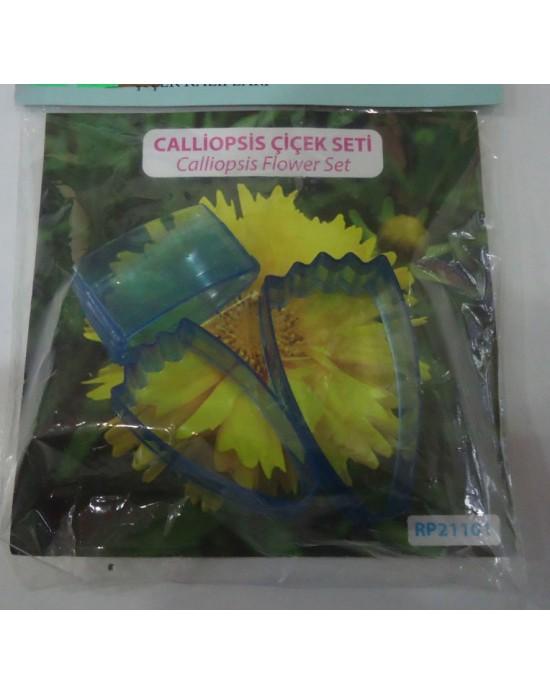 CALLİOPSİS Çiçek Seti 2'li
