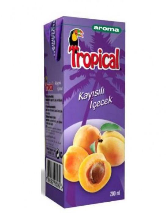 Aroma Tropical Meyve Suyu Kayısı 200 ml (Koli)